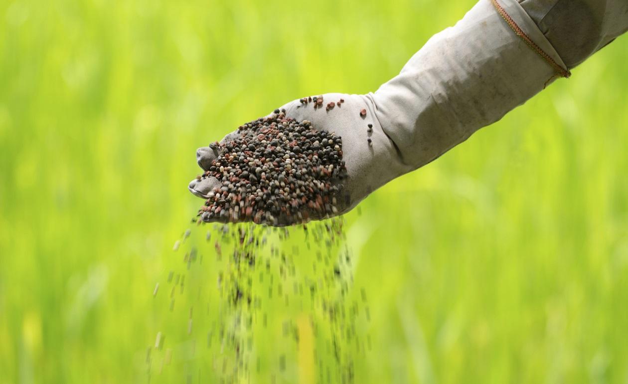 M quina transforma restos alimenticios for Un fertilizzante