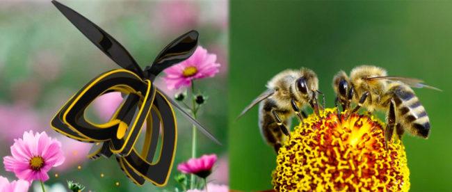MacroBacter.com   Biotecnología: ¿Los drones pueden ayudar a las abejas a polinizar las plantas?